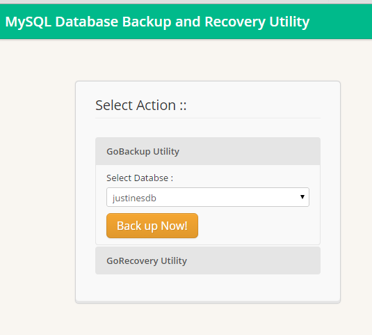 GoBackup Database Utility Software