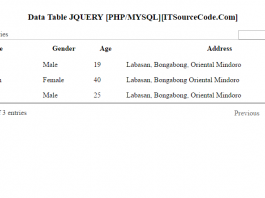 DataTable JQuery Plug-in To Make Google-Like Search Engine Using PHP/MySQL
