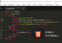 html5 form input types
