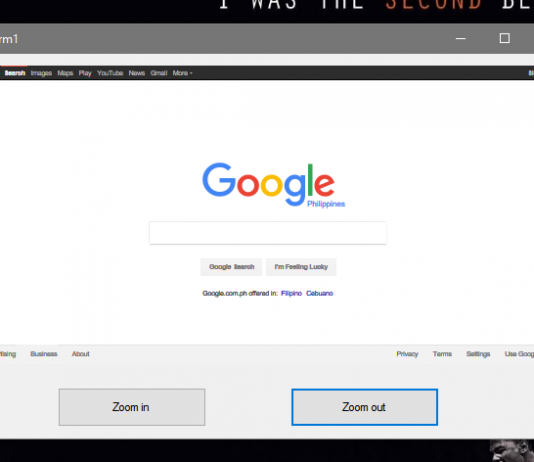 How to Zoom In and Out in WebBrowser using VB.Net