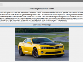 How to Convert Image to Base64 in VB.Net