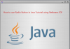 How to use Radio Button in Java Tutorial using NetBeans IDE