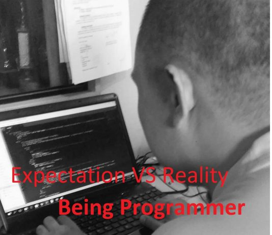 Expectation Versus Reality Being Programmer
