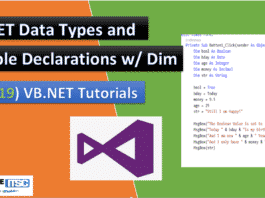 VB.Net Data Types and variable Declaration with DIM